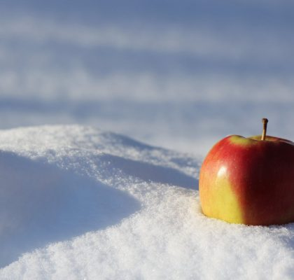 overleven winter