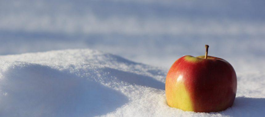 Overlevingstips voor de koude maanden
